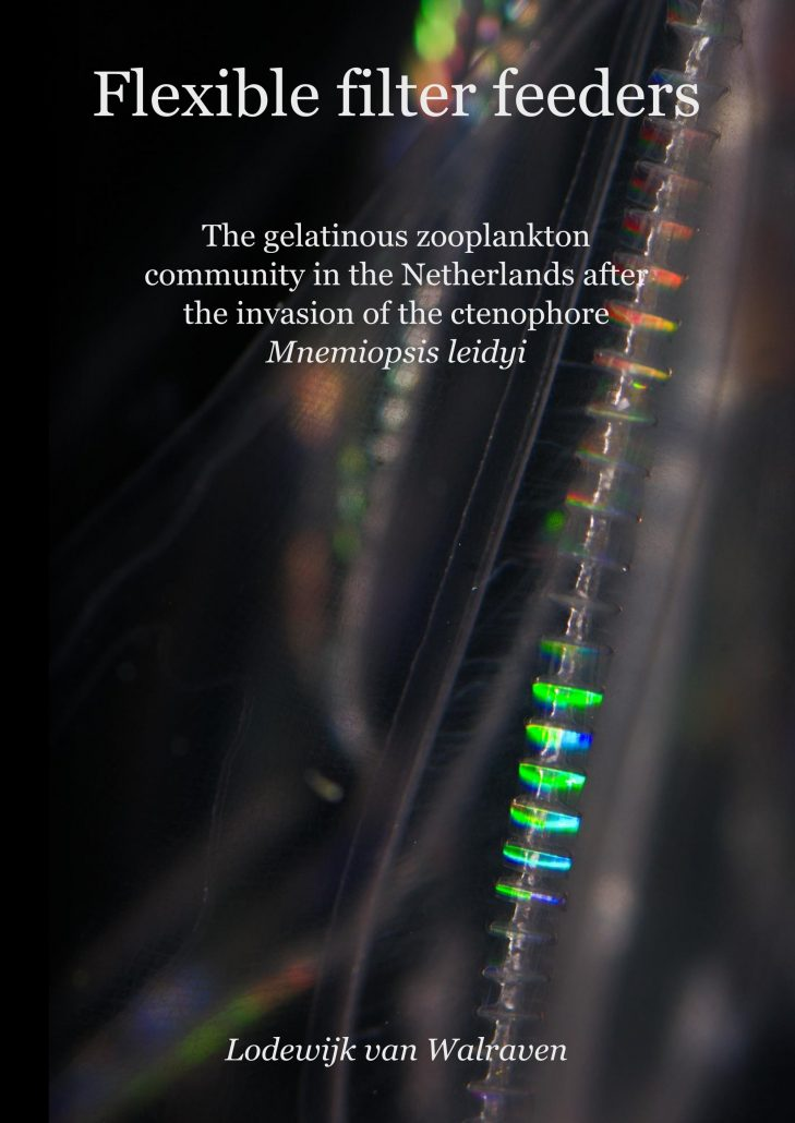 van Walraven PhD thesis cover